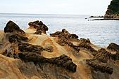 野柳海洋公園:照片 040.jpg
