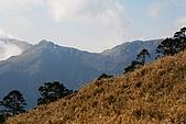志佳陽大山:照片 1843.jpg
