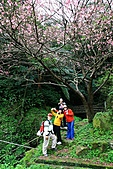 天道清修院:照片 378.jpg