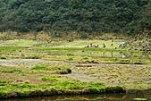 初探松羅湖:照片 078.jpg