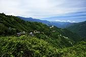 拉拉山神木群步道:上巴陵