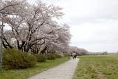 2019.04.19 展勝地:_MG_0347_副本.jpg