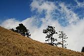 志佳陽大山:照片 1846.jpg