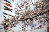 2019.04.19 展勝地:_MG_0422_副本.jpg