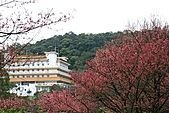天道清修院:照片 391.jpg