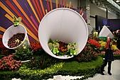 2010 臺北國際花卉博覽會 :照片 078.jpg