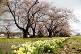 2019.04.19 展勝地:_MG_0440_副本.jpg