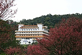 天道清修院:照片 392.jpg