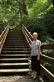 拉拉山神木群步道:中壢來的93 歲阿媽.走神木步道