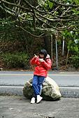 武陵櫻花宴:照片 611.jpg