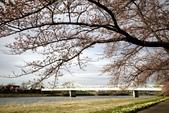 2019.04.19 展勝地:_MG_0430_副本.jpg