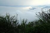 今日大尖山雲海: