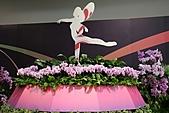 2010 臺北國際花卉博覽會 :照片 079.jpg