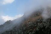 志佳陽大山:照片 1804.jpg