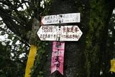 102石碇國小-筆架.二格: