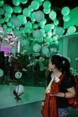2010 臺北國際花卉博覽會 :照片 102.jpg