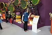 2010 臺北國際花卉博覽會 :照片 070.jpg