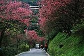 天道清修院:照片 416.jpg