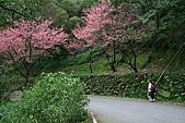 天道清修院:照片 430.JPG