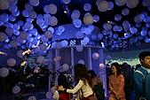 2010 臺北國際花卉博覽會 :照片 104.jpg