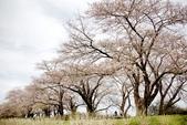 2019.04.19 展勝地:_MG_0351_副本.jpg