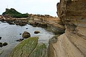野柳海洋公園:照片 032.jpg