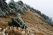 志佳陽大山:照片 1822.jpg