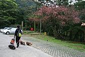 天道清修院:照片 080.jpg
