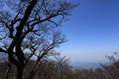 1050326 1727山頭:IMG_0066.JPG