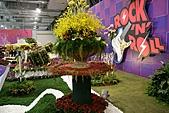 2010 臺北國際花卉博覽會 :照片 082.jpg