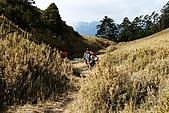 志佳陽大山:照片 1828.jpg
