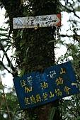 初探松羅湖:照片 064.jpg
