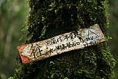 初探松羅湖:照片 065.jpg