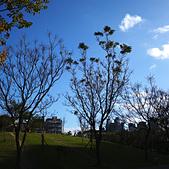 永和四號公園(823紀念公園):DSC1084-1.jpg