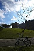 永和四號公園(823紀念公園):DSC1093-1.jpg