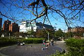 永和四號公園(823紀念公園):DSC1109-1.jpg