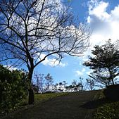 永和四號公園(823紀念公園):DSC1110-1.jpg