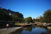永和四號公園(823紀念公園):DSC1113-1.jpg