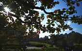 永和四號公園(823紀念公園):DSC1120-1.jpg