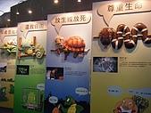 木柵動物園:DSCF8173.JPG