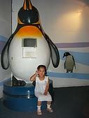 木柵動物園:DSCF8176.JPG