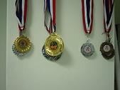 散打昇級晉段與競賽:再添金牌