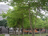 校園是美的:DSC03066.JPG