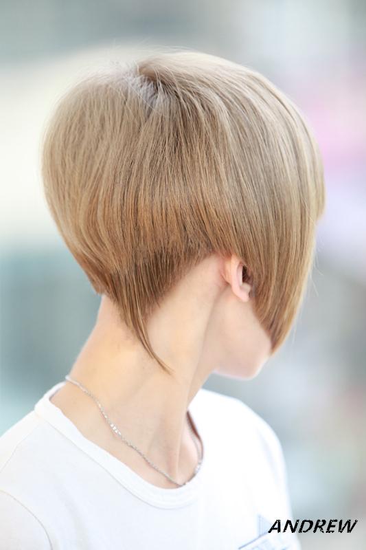 髮型/3: