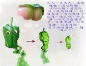 佛像、法語、因果:2011210151840.jpg