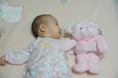 Kaloo兔&Teddy熊:1131574884.jpg
