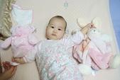 Kaloo兔&Teddy熊:1131574887.jpg