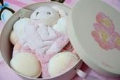 Kaloo兔&Teddy熊:1131574870.jpg