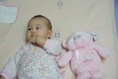 Kaloo兔&Teddy熊:1131574883.jpg