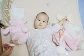 Kaloo兔&Teddy熊:1131574886.jpg